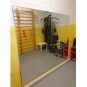 Specchio danza modulare liscio cm 100 x 170