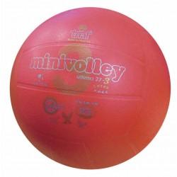 Pallone Minivolley TRIAL...